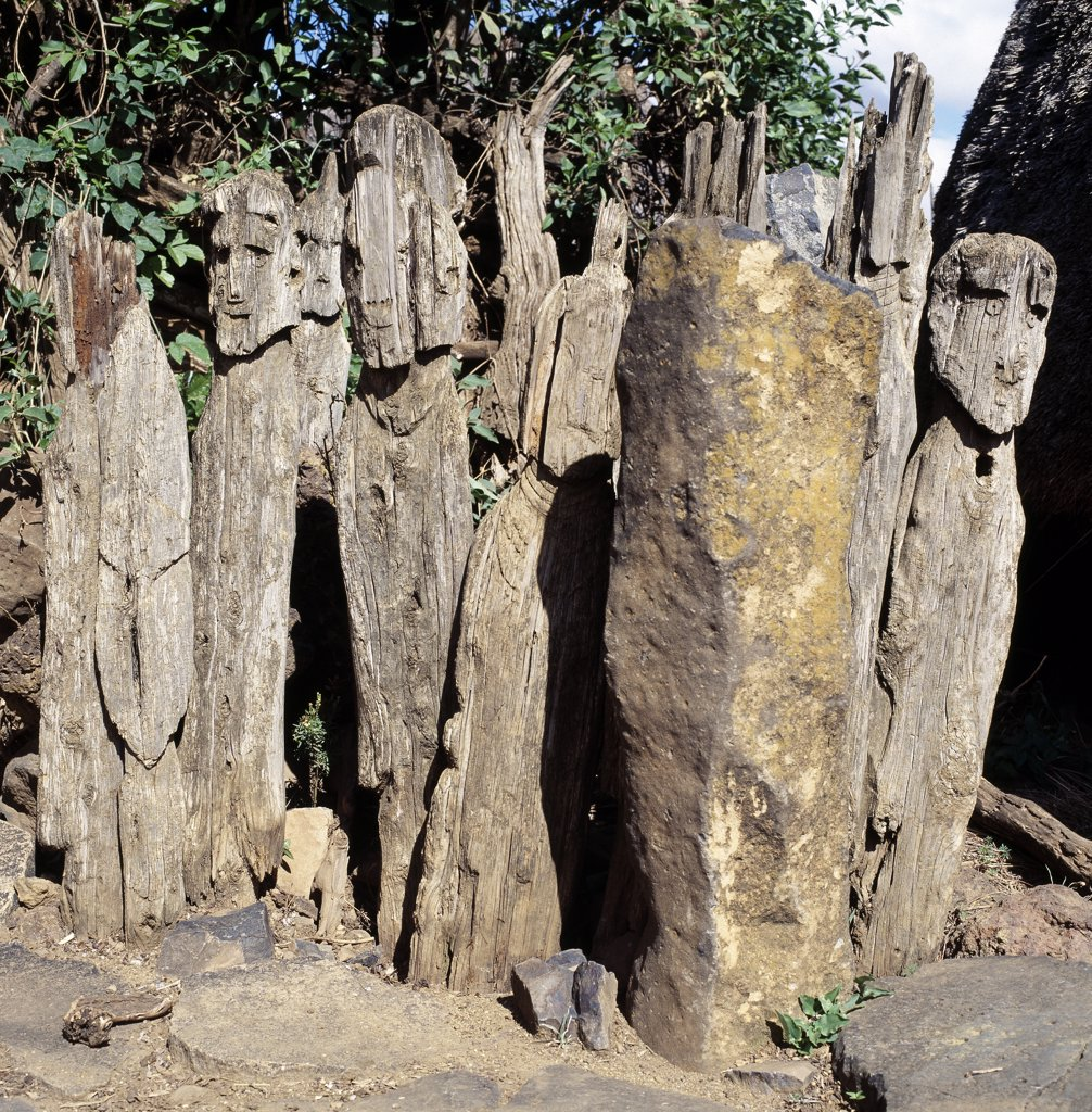The Konso people of southwest Ethiopia worship the sky God, Waq, and place carved wooden effigies at prominent places to honour their illustrious ancestors. These eerie totems are often found grouped together.  They can depict a dead hero, his wives, his enemies slain in battle or dangerous animals he may have killed in his lifetime. : Stock Photo