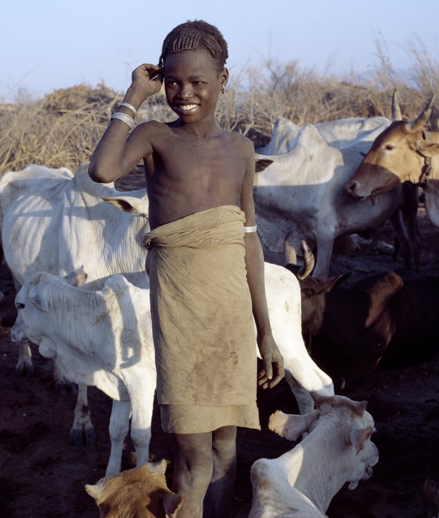 A  Dassanech boy with an attractive hairstyle is surrounded by his familys livestock in the Omo Delta of Southwest Ethiopia. The Dassanech speak a language of Eastern Cushitic origin. They practice animal husbandry and fishing as well as agriculture. : Stock Photo