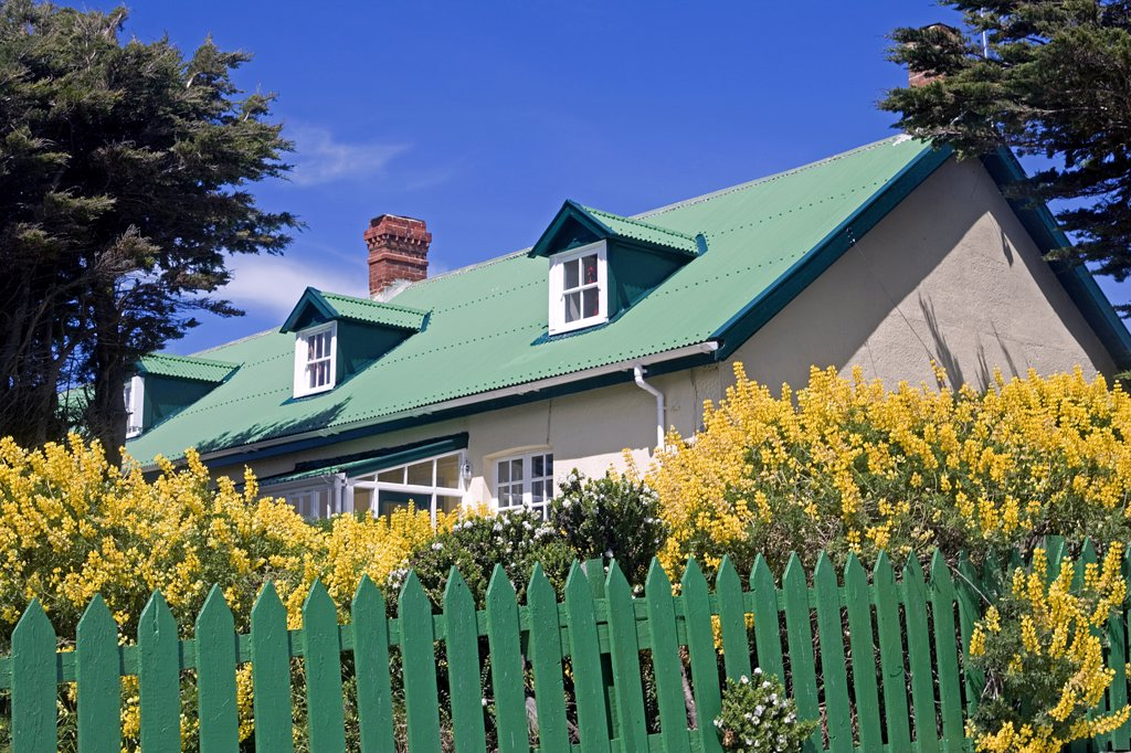 Frontage of a typrical tin-roofed cottage on Ross Road in the Port Stanley showing cottage gardens and green painted tin roof. : Stock Photo