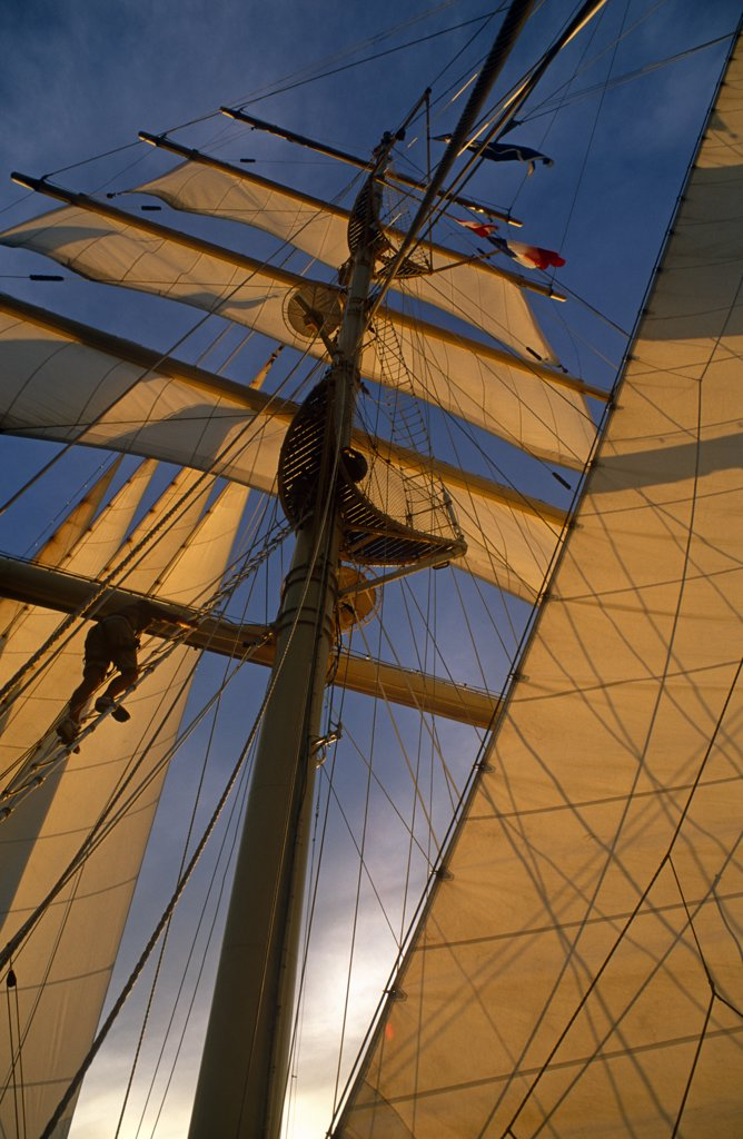 Stock Photo: 4272-11070 Star Flyer (one of the Star Clippers' ships). Passengers are often allowed to climb the masts of the Star Flyer, a barquentine used primarily for upmarket cruises.