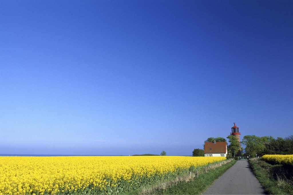 Lighthouse in Staberhuk, Schleswig-Holstein, Germany : Stock Photo