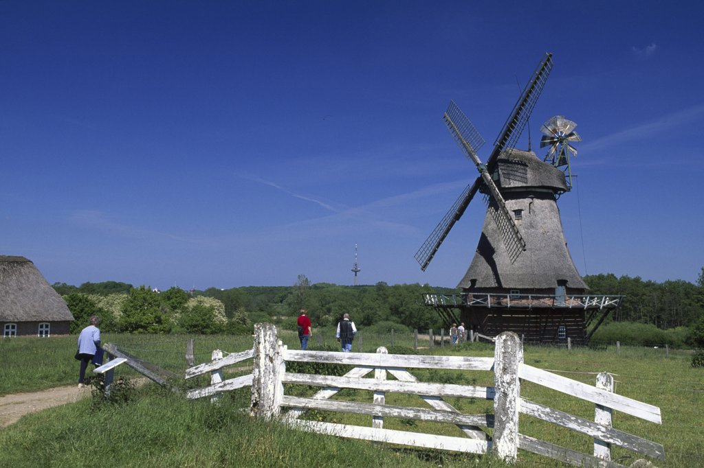 Windmill in the Open air museum Molfsee, Schleswig-Holstein, Deutschland : Stock Photo