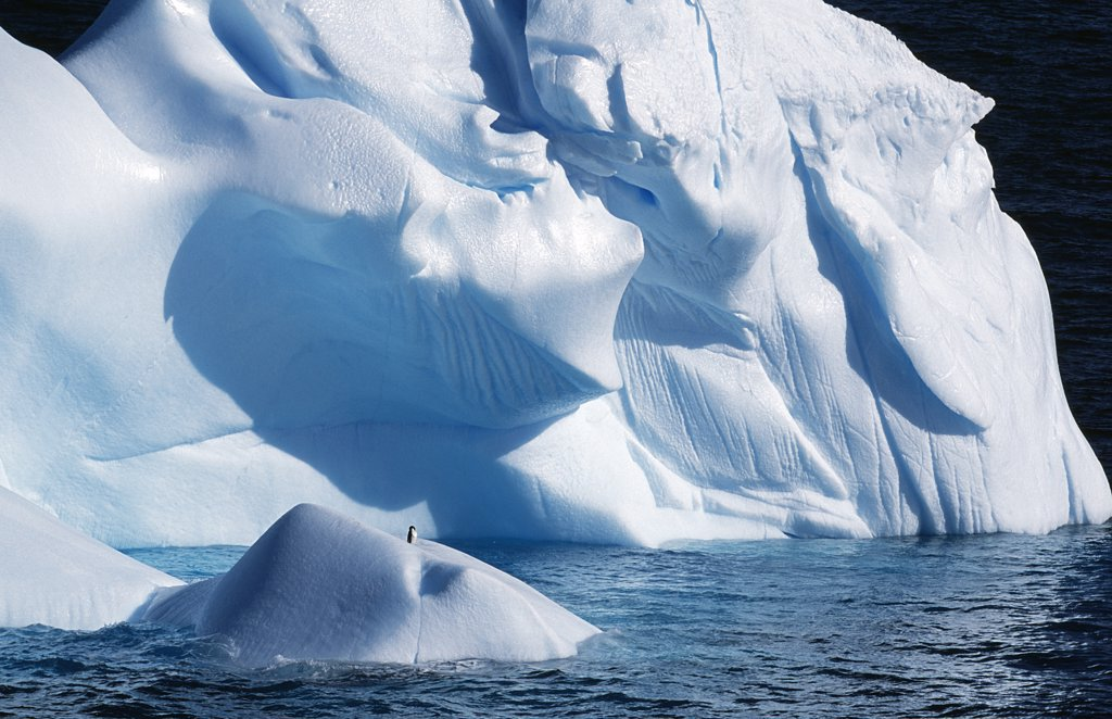 Stock Photo: 4272-1326 Antarctica, Antarctic Peninsula, Paradise Harbour. Icebergs colours and shapes at the Chilean base in Paradise Harbour.