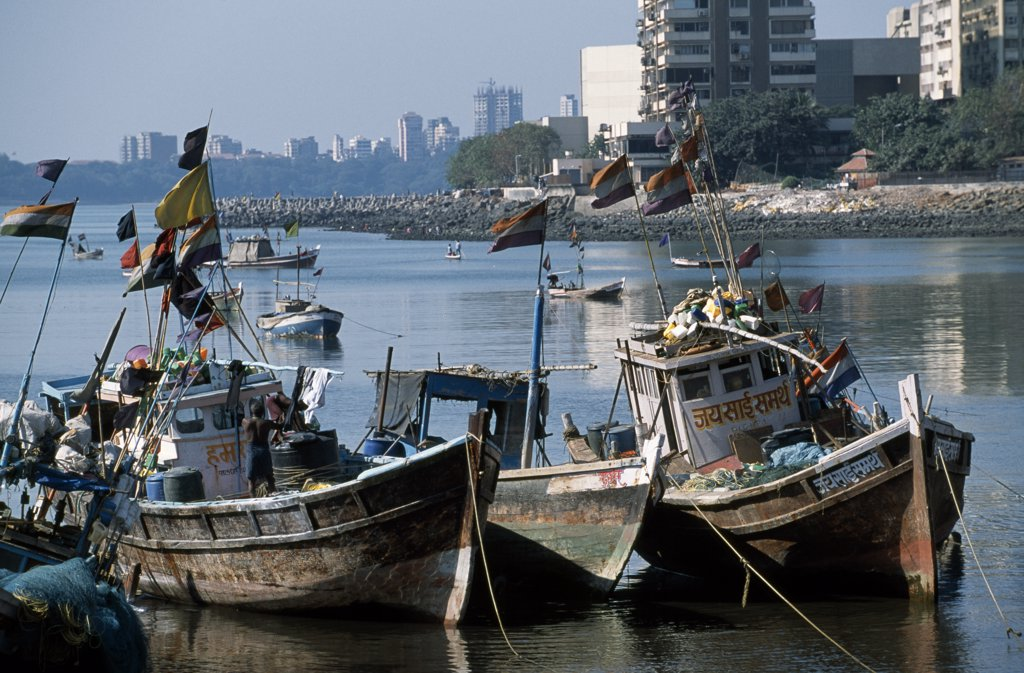 Stock Photo: 4272-13384 Fishing boats