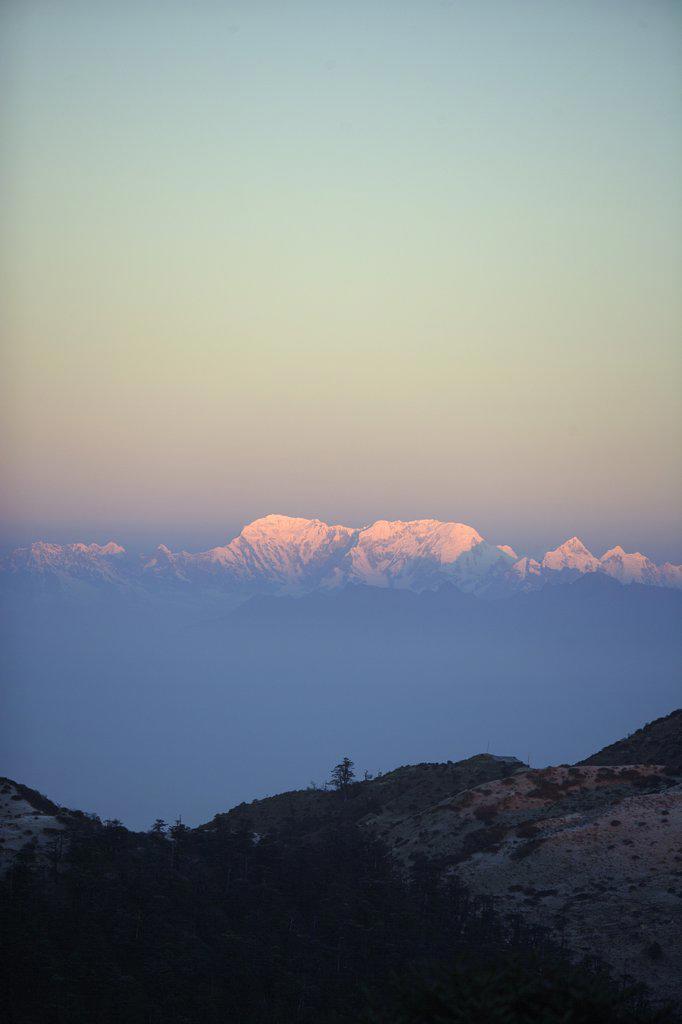 Stock Photo: 4272-13599 Gairibas Beat, Singhalila National Park, India