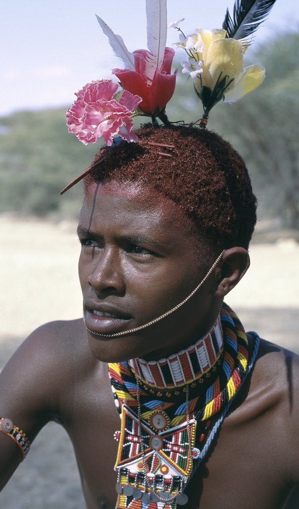 The adornments of Samburu warriors change from generation to generation.  In the 1990's cheap plastic flowers from China became fashionable. : Stock Photo