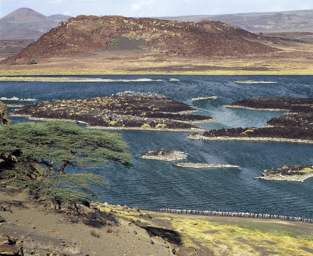 At the southern end of Lake Turkana, just south of Von H_hnel Bay, lies a small, extremely alkaline lake which is fed from Lake Turkana underground.  The colours of the water and the surrounding lava country can be vivid in certain light. Small flocks of lesser flamingos congregate here on rare occasions. : Stock Photo