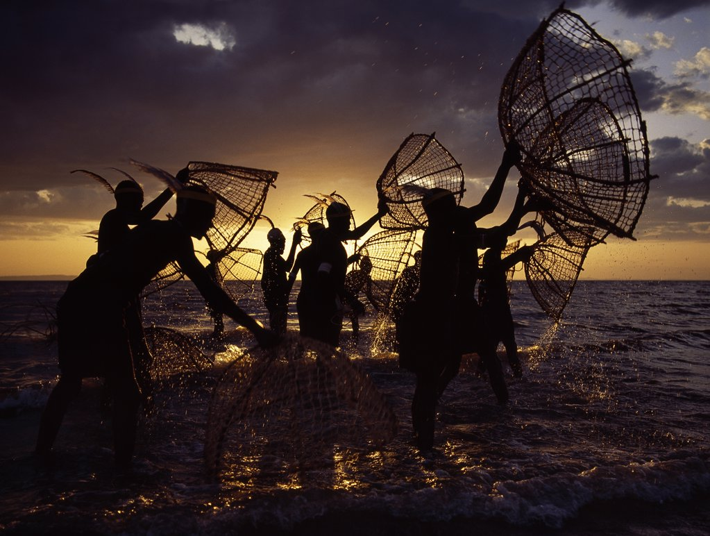 As the sun rises over Lake Turkana, a group of fishermen fish for tilapia with their traditional fishing baskets in the lakes shallow waters.  These traditional methods of fishing are now rare because the introduction of small mesh gillnets has resulted in a marked decline of fish stocks close to the shore. : Stock Photo