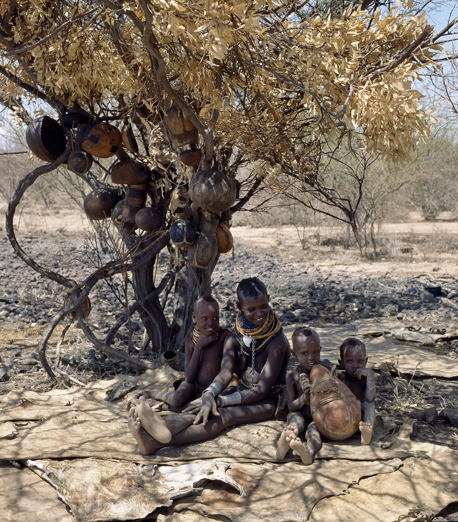 Stock Photo: 4272-16294 When the Turkana form temporary stock camps in the dry season, they might have to move again in three or four days' time. Often, families have no time or inclination to build a temporary home. They will make do with a shady tree and sleep on skins spread out on the ground.