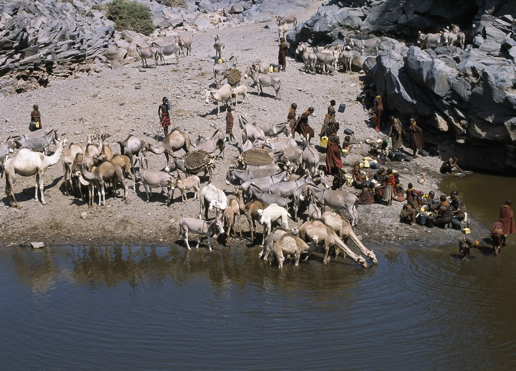 Stock Photo: 4272-16352 The natural rock pools along the Sirima lugga (seasonal watercourse) are important to the Turkana and their livestock in an otherwise waterless, rocky region at the southern end of Lake Turkana.  In a year of average rainfall, water in the deepest pools will last throughout the year. If they dry up, the Turkana resort to using the alkaline water of Lake Turkana.