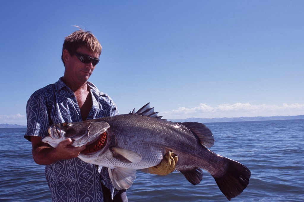 Stock Photo: 4272-16831 Fishing guide, Colin Burch, holds up a 30 lb Nile Perch caught on a lure.    Nile perch are the largest freshwater fish accessible to anglers.   The biggest Nile perch on record was caught by local fishermen on Lake Victoria and weighed in at 232 kg.