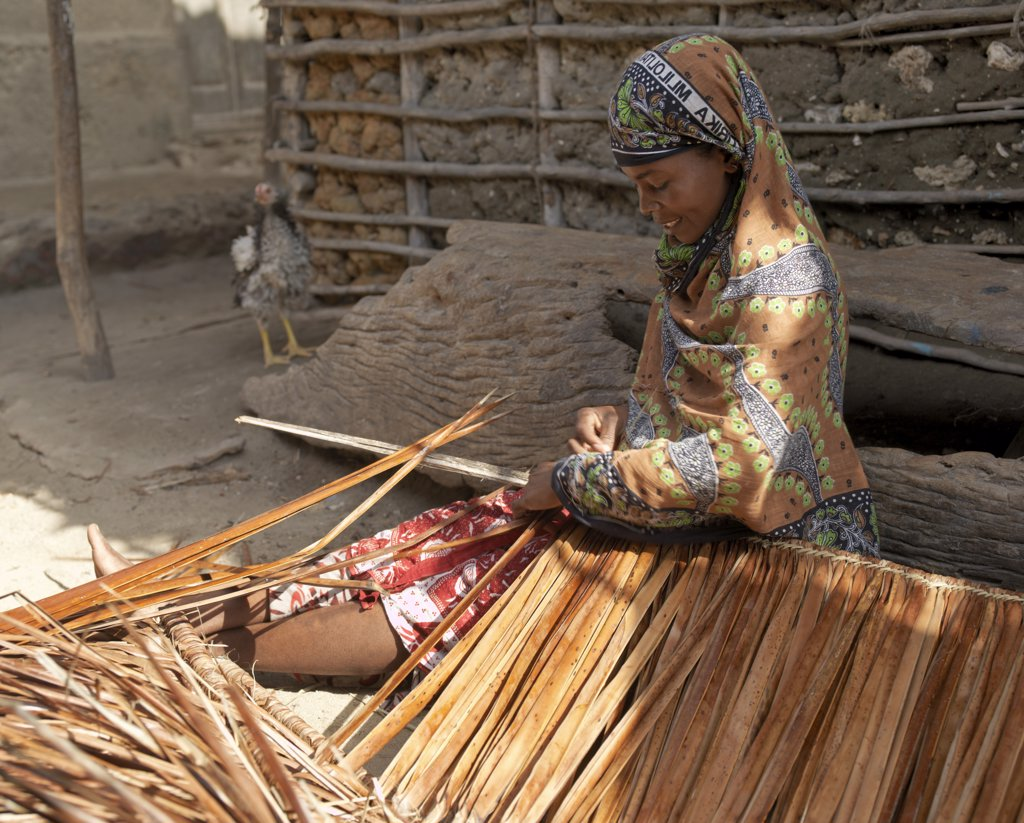 Stock Photo: 4272-17138 A woman makes makuti, a thatch from dried fronds of coconut palms, outside her home in Faza village.  The chequered history of Faza dates back several hundred years.  It was destroyed by Pate in the 13th century and again by the Portuguese in 1586.