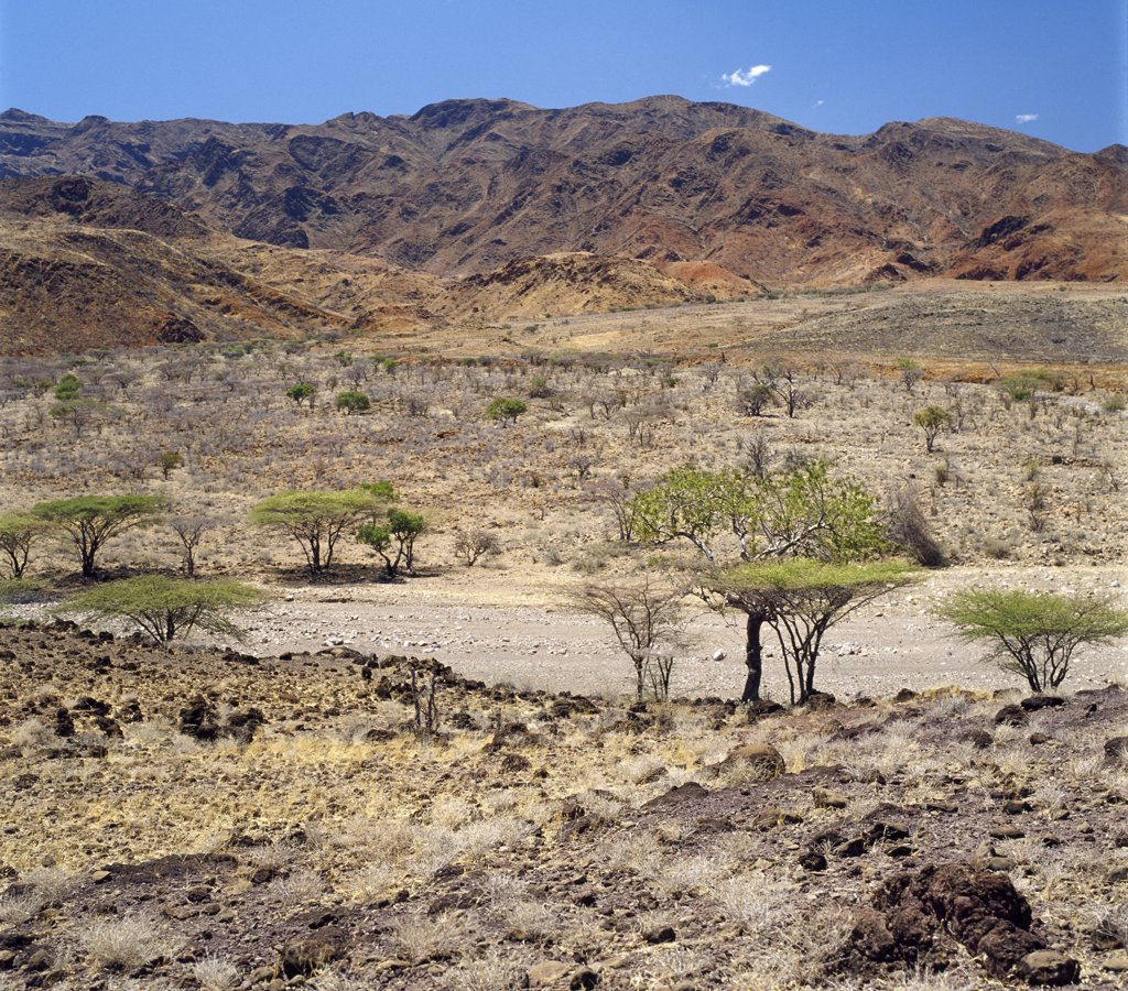 Stock Photo: 4272-17283 The Suguta Valley, a part of the Great Rift Valley south of Lake Turkana, is one of the hottest and driest places in northern Kenya.