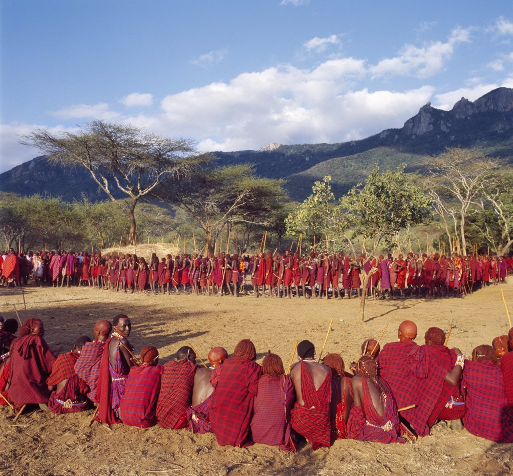 Africa, Kenya, Kajiado District, Ol doinyo Orok. In the late afternoon light, a large gathering of Maasai warriors wait in line to be blessed by the elders during an Eunoto ceremony when the warriors become junior elders and henceforth are permitted to marry. : Stock Photo
