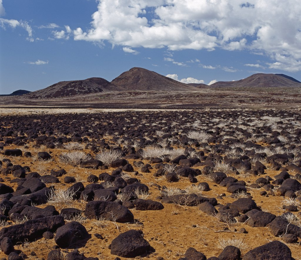 Kenya, Loiengalani, Sirima. A lava field near the southeast shore of Lake Turkana. : Stock Photo