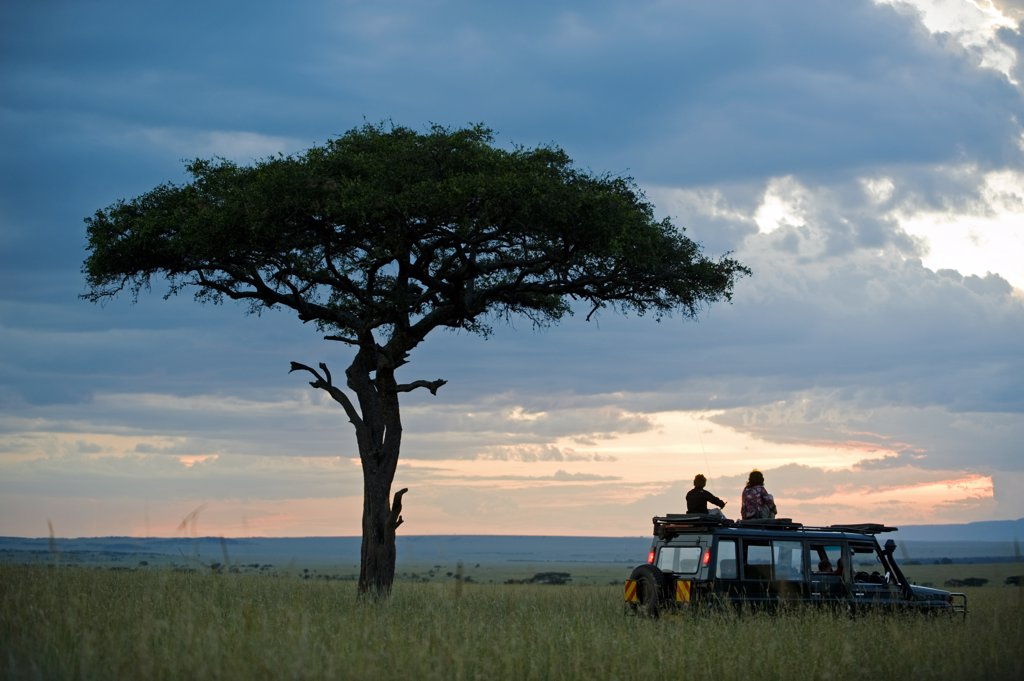 Stock Photo: 4272-18798 Kenya, Masai Mara.  A pause for a sundowner beneath a balanites tree during a game drive on a family safari. (MR)