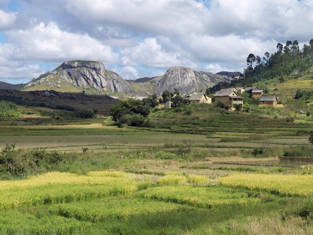 Rice paddies and a Betsileo hamlet near Ambalavao, Madagascar : Stock Photo