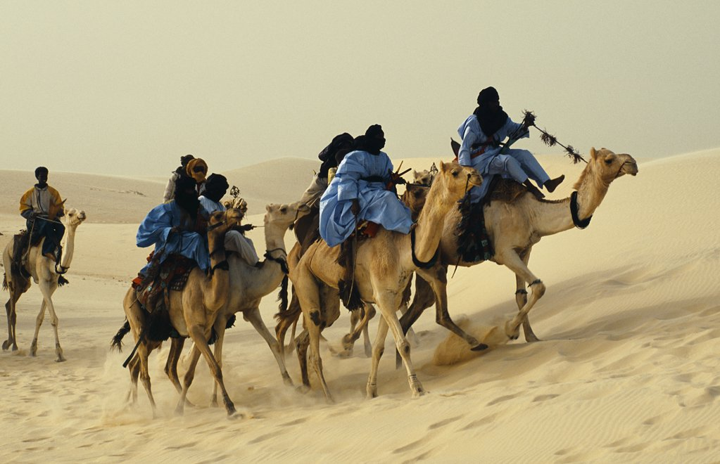 The Festival in the Desert 2005. Touregs arriving by camel to the festival : Stock Photo