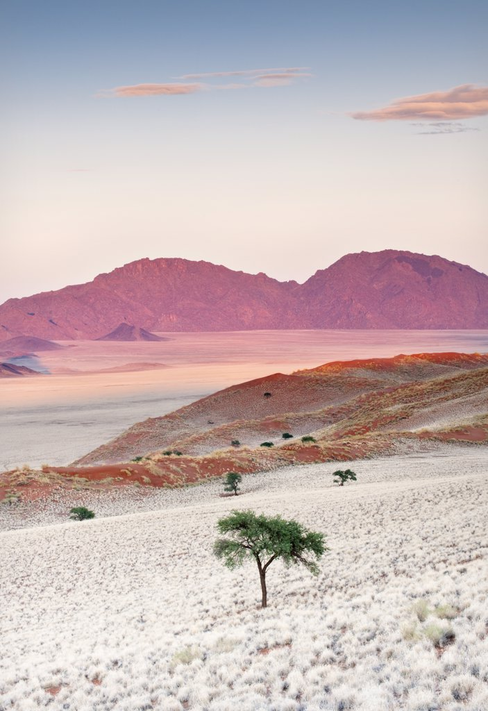 Stock Photo: 4272-23759 Sunrise, Namibia, Africa