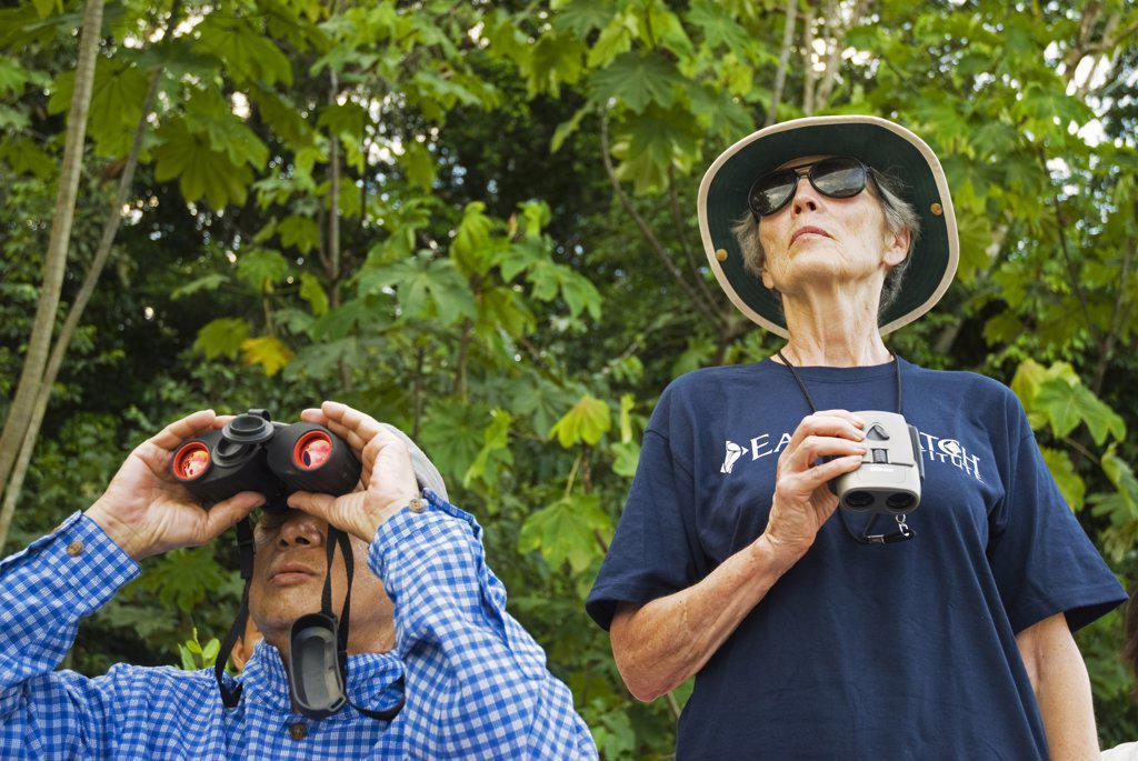 Stock Photo: 4272-25691 Peru, Amazon, Amazon River. Earthwatch volunteers observing & recording Macaw population on the Yavari River, Lago Preto, Amazon, Peru. (MR).