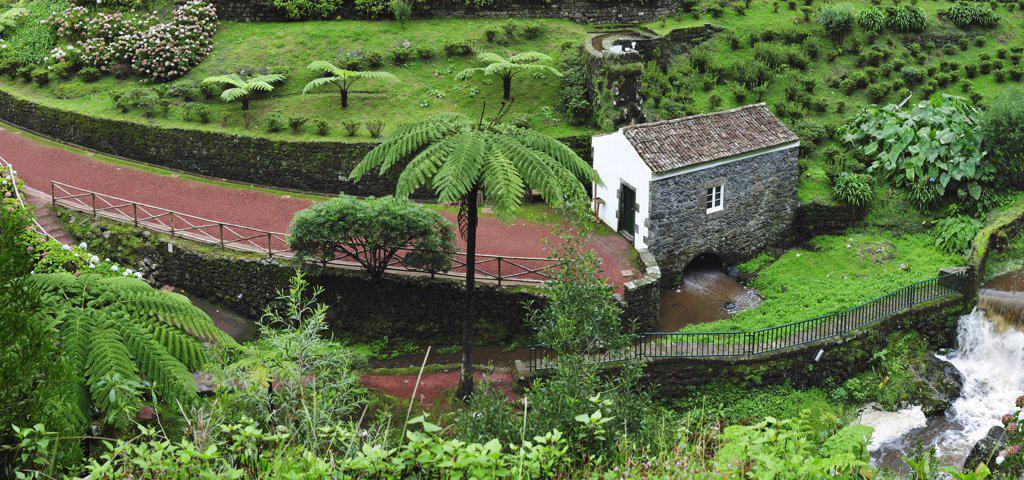 Stock Photo: 4272-26598 Ribeira dos Caldeiroes Nature Reserve at Achada, Nordeste.  Sao Miguel, Azores islands, Portugal