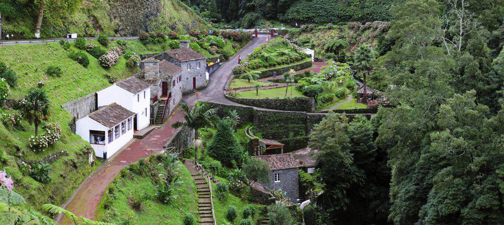 Stock Photo: 4272-26599 Ribeira dos Caldeiroes Nature Reserve at Achada, Nordeste.  Sao Miguel, Azores islands, Portugal