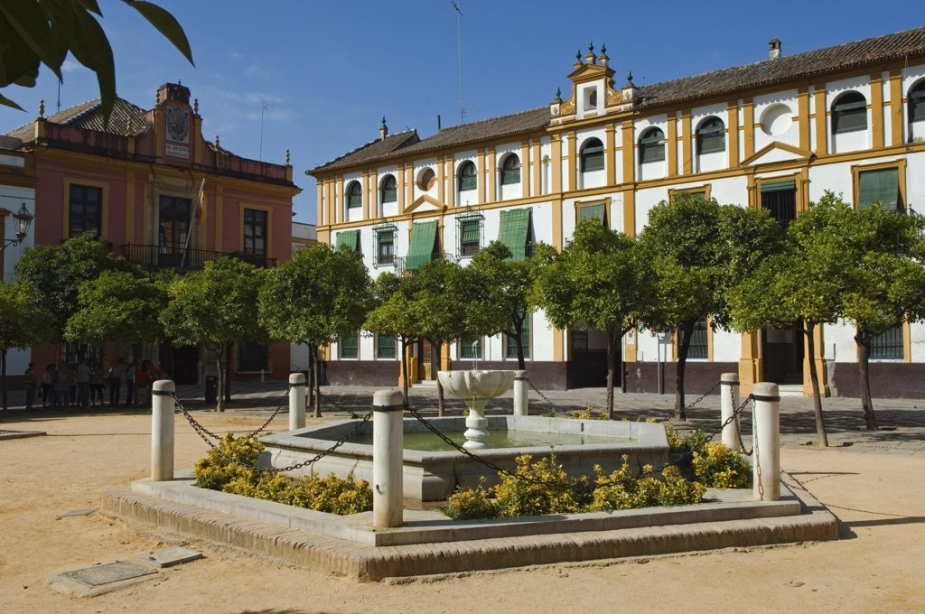 Stock Photo: 4272-30282 Plaza del Triunfo in the Real Alcazar Palace in Seville, Spain