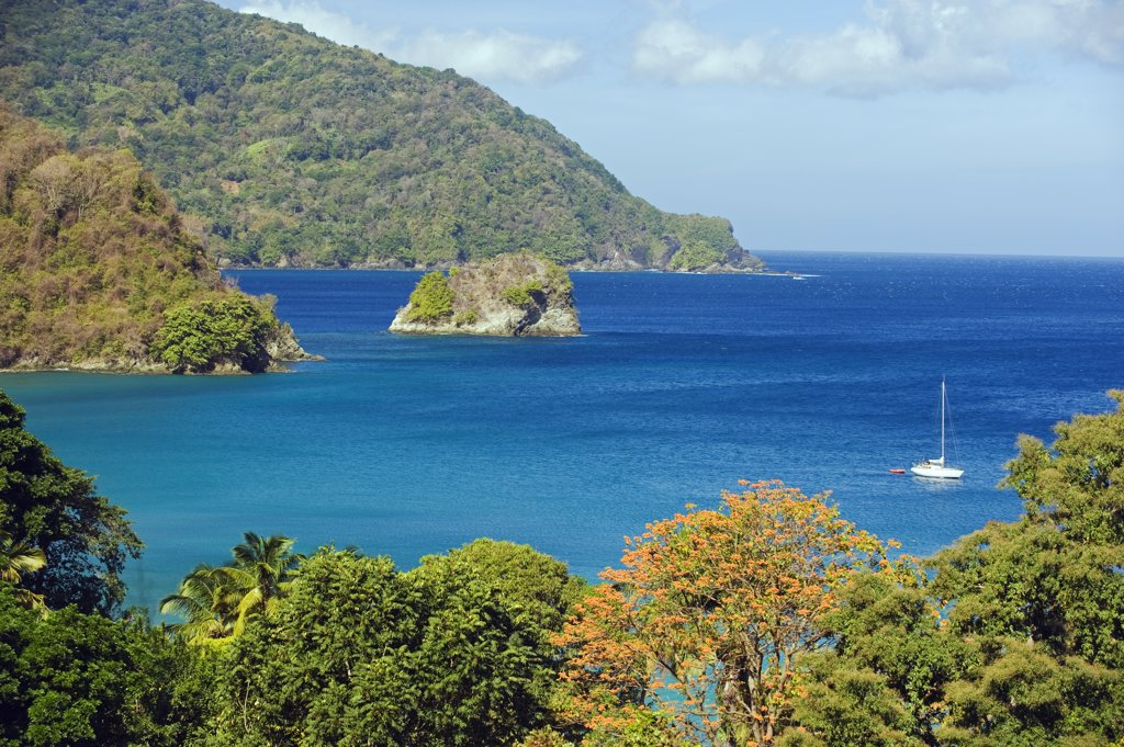 Stock Photo: 4272-32479 The Caribbean, Trinidad and Tobago, Tobago Island