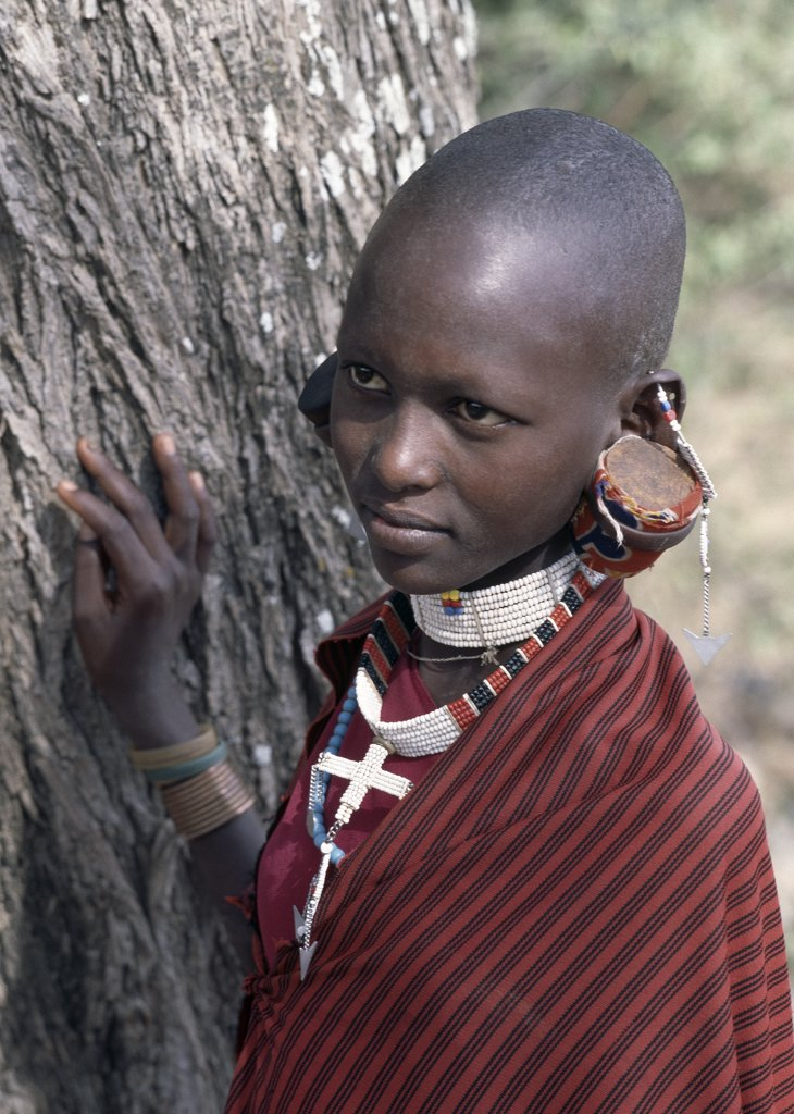 Stock Photo: 4272-32851 A Maasai girl in traditional attire.  Her earlobes have been cut; they are then gradually stretched over a period of years with larger and larger pieces of wood.  Although the practice is slowly dieing out, Maasai earlobes can sometimes reach down to a person's shoulders.