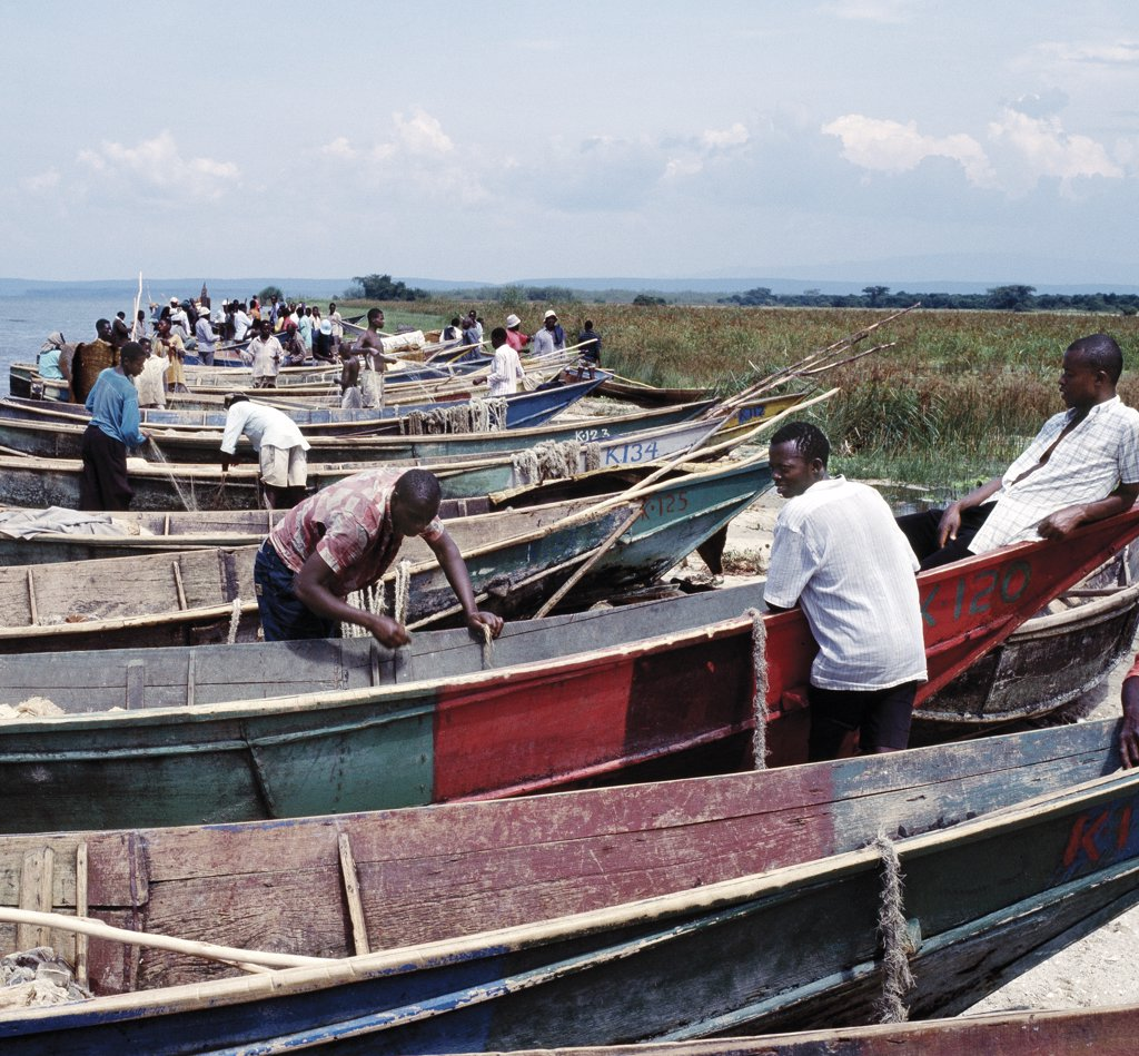 Wooden fishing boats line the eastern shore of Lake Edward at Rwenshama, an important fishing village close to the Queen Elizabeth National Park. After fishing all night, the men repair nets and attend to their boats. Lake Edward, 2,995 feet above sea level, lies on the floor of the western branch of Africa's Great Rift Valley system and is connected to Lake George by the Kazinga Channel. : Stock Photo