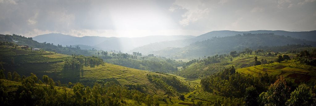 Stock Photo: 4272-3402 Burundi. As one of the most densely populated countries in Africa, nearly all available land is farmed. This has lead to widespread deforestation.