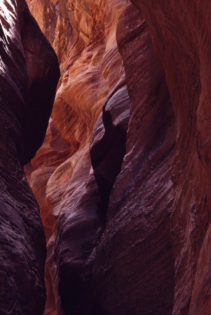Stock Photo: 4272-34131 A slot canyon.  these canyons are carved out by small rivers that often lie dry, but are prone to flash flood.  The waters can rise from inches to 60 feet in under an hour making them extremely dangerous.