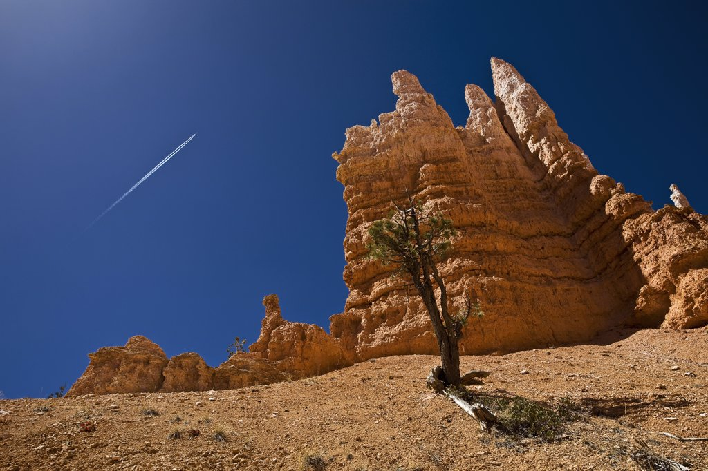 Stock Photo: 4272-34564 United States of America, Utah, Ruby's Inn, Bryce Canyon, a solitary brightly coloured hoodoo on the Navajo Loop Trail Walk.