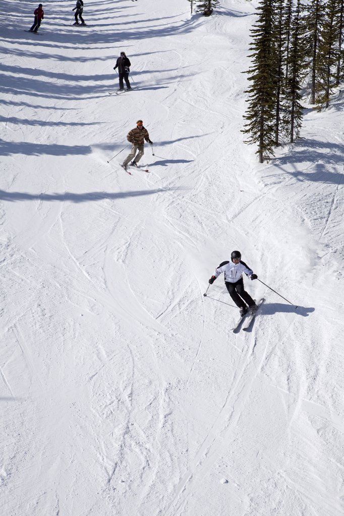 Stock Photo: 4272-3664 Ski scene at the Kicking Horse Resort in the Purcell Mountains near Golden British Columbia
