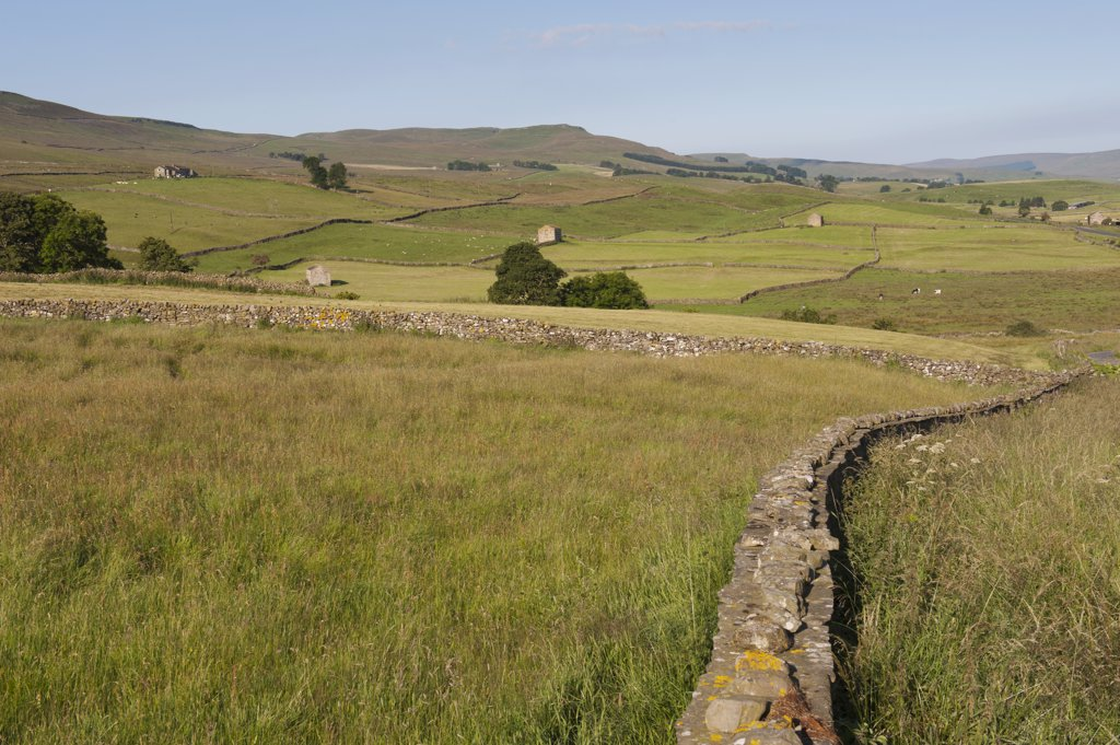 Scenic view across the Wensleydale Valley, Yorkshire Dales National Park, North Yorkshire : Stock Photo
