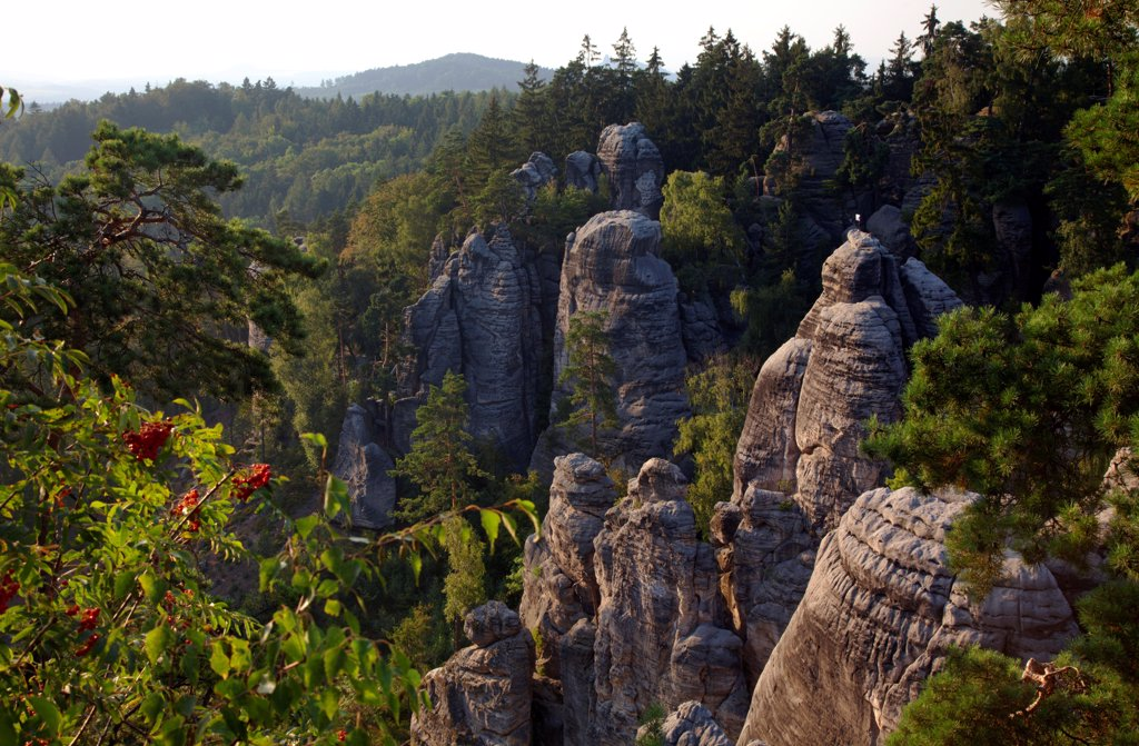 Czech Republic, Bohemia, Prahovskie Region, Particluar rock formations at thePrahovskie Skali natural reserve. : Stock Photo