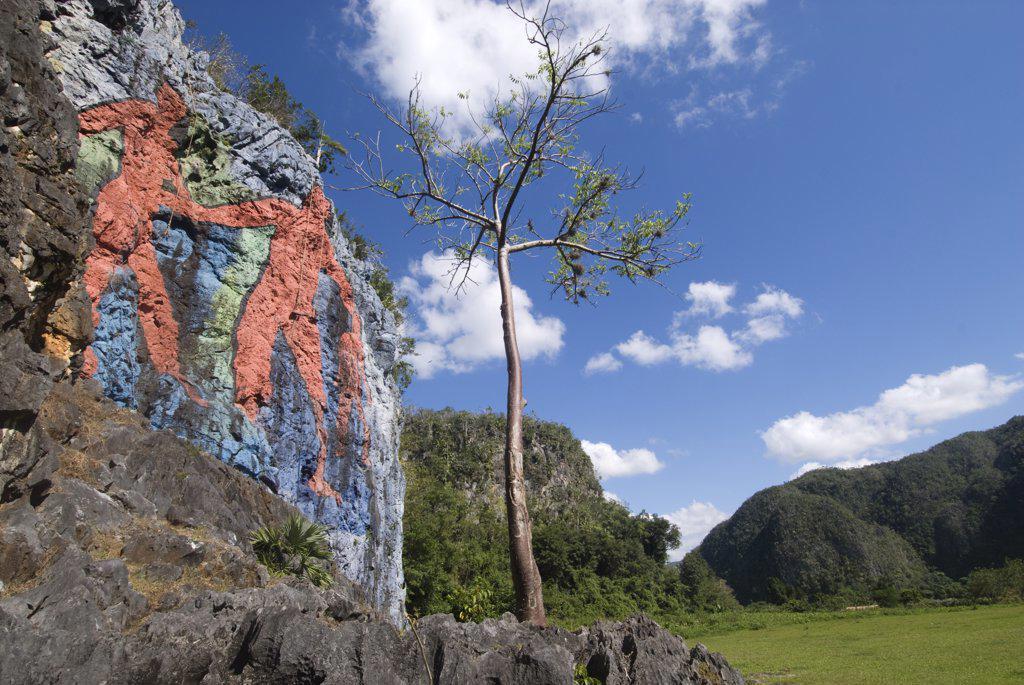 Stock Photo: 4272-7026 Cuba, Vinales. Mural de la Prehistoria. A mural of evolution commissioned by Fidel Castro in 1960's, Mogote dos Hermanas