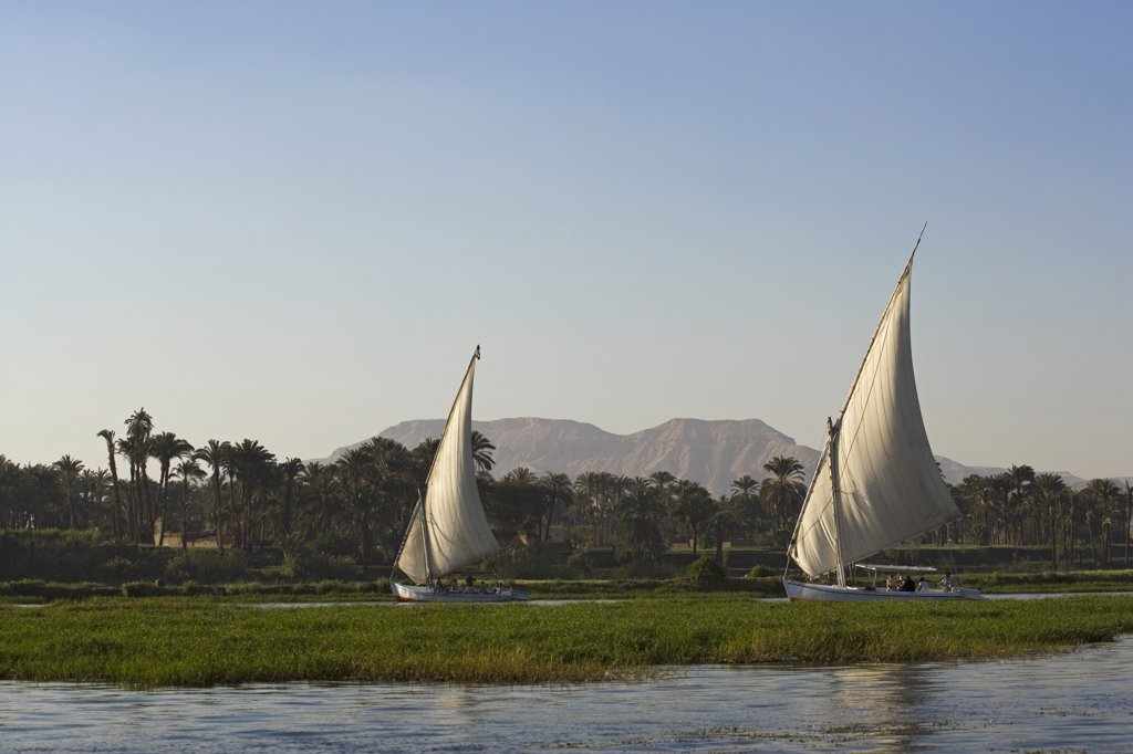 Stock Photo: 4272-7582 Feluccas sailing on the Nile at Luxor, Egypt