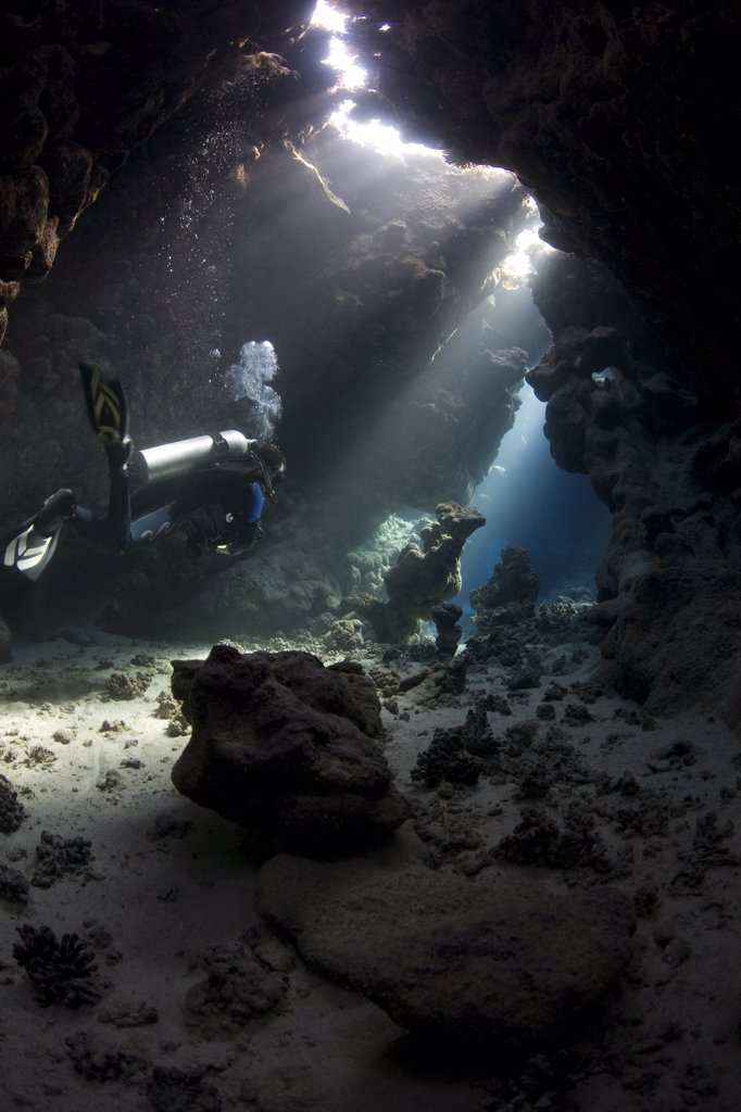 Stock Photo: 4272-7754 Egypt, Red Sea. A Diver explores the caves at St. John's Reef in the Egyptian Red Sea