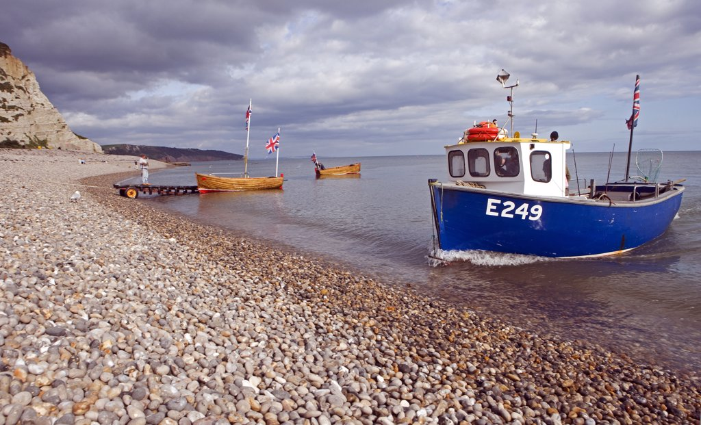 England, Devon, Beer. A typical Devon lugger is hauled ashore onto Beer Beach. : Stock Photo