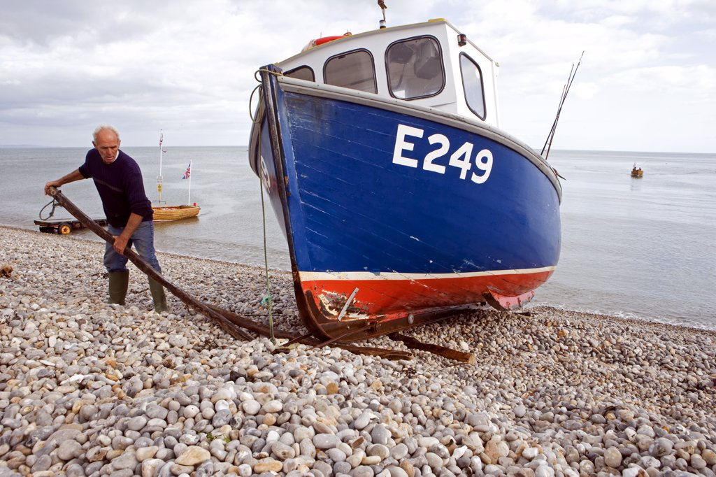Stock Photo: 4272-9303 England, Devon, Beer. A typical Devon lugger is hauled ashore onto Beer Beach.