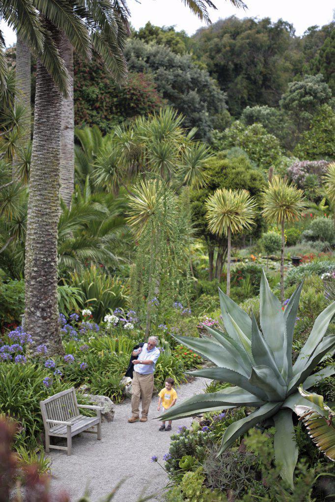 England, Isles of Scilly, Tresco, Abbey Garden. Grandfather and grandson exploring one of the garden's terraces. : Stock Photo