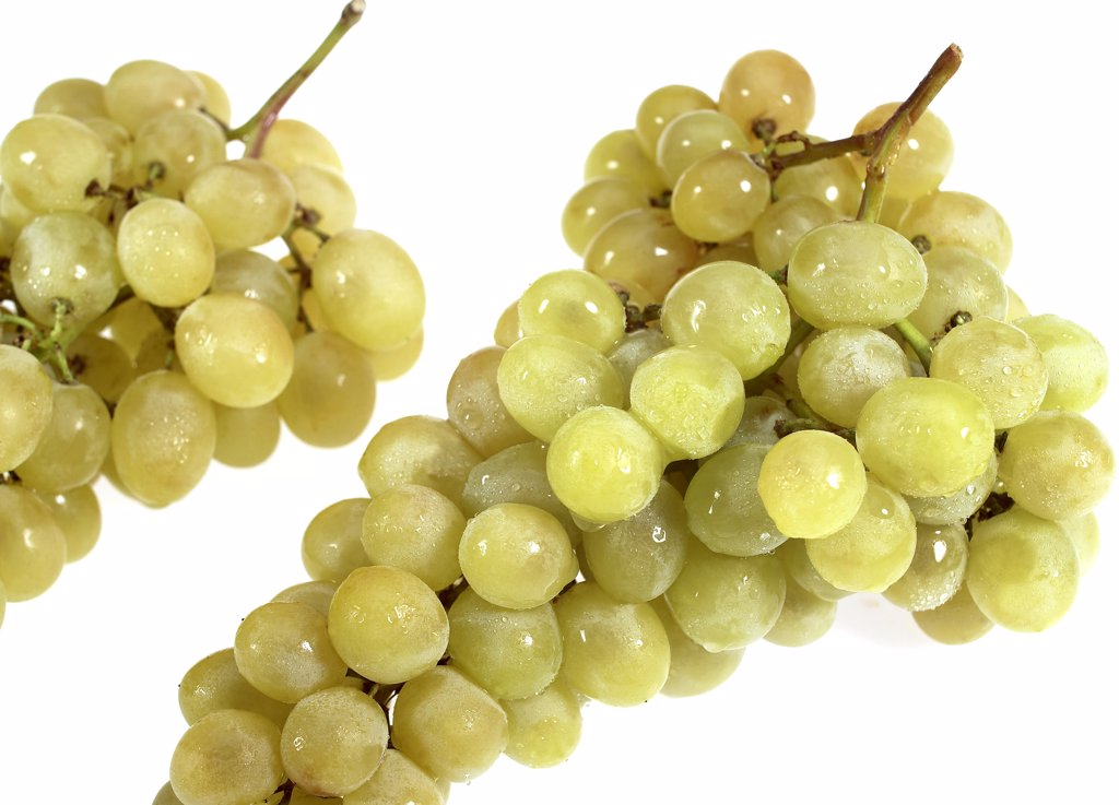 White Grape, vitis vinifera, Fruit against White Background : Stock Photo