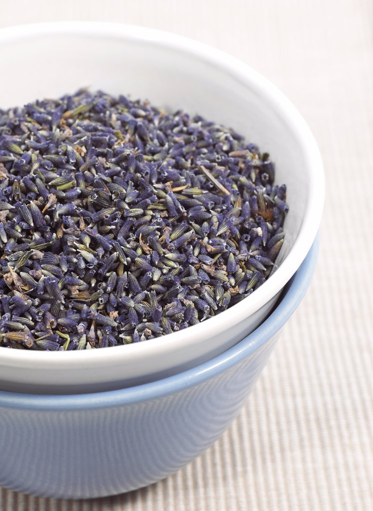 Stock Photo: 4273-15351 Lavender, lavandula sp, Dry Seeds