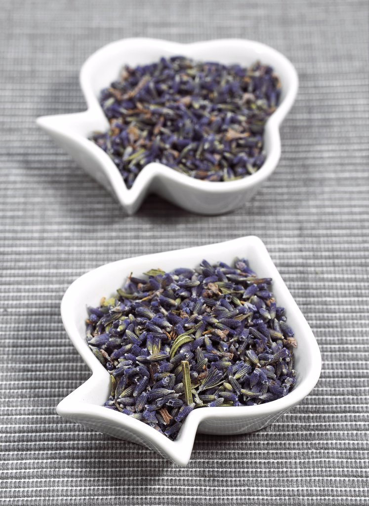 Lavender, lavandula sp, Dry Seeds : Stock Photo