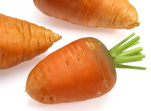 Stock Photo: 4273-17191 Carrot, daucus carota, Vegetable against White Background