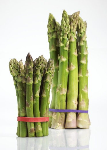 Stock Photo: 4273-17459 Green Asparagus, asparagus officinalis, Vegetables against White Background