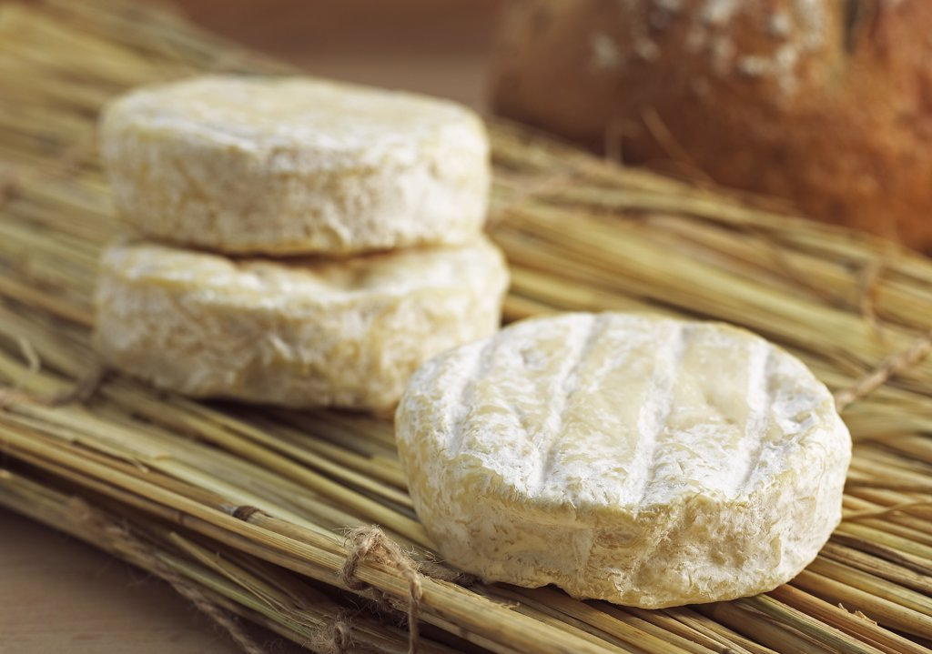 French Cheese Called Saint Marcelin, Cheese produced from Cow's Milk : Stock Photo