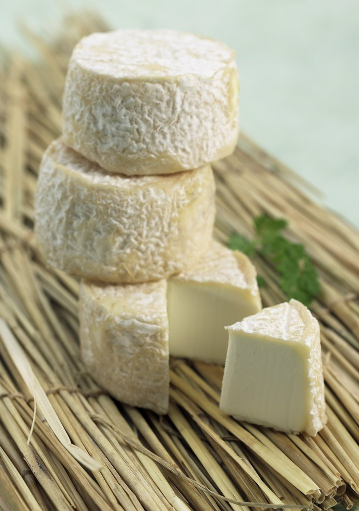 Stock Photo: 4273-17917 French Cheese Called Crottin, Cheese made with Goat Milk