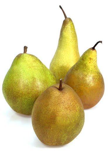 Stock Photo: 4273-4793 Beurre Hardy, Conference, Comice Et Williams Pears, Pyrus Communis, Fruits Against White Background